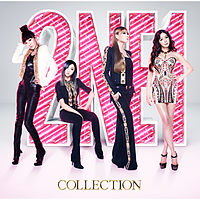 2ne1 - I dont care (japanese version).mp3
