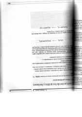 CHAMIZO Y BRAVO.pdf