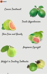 Guava Benefits.pdf