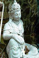 Guan Yin in the Garden - 533x800px