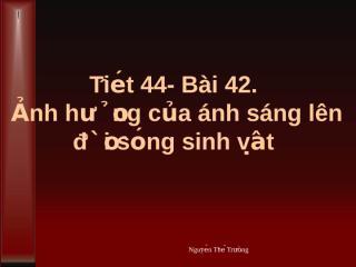 Bai 42 Anh huong cua anh sanh len doi song sinh vat.ppt